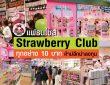 แฟรนไชส์ Strawberry Club ทุกอย่าง 10 บาท
